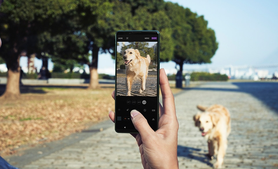 Фотография человека на улице, который готовится фотографировать свою собаку с помощью Xperia 5 III.