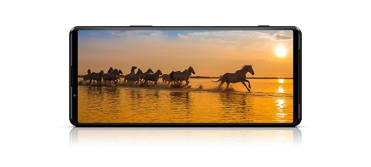 Экран Xperia 1 III с изображением бегущих диких лошадей
