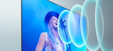 Изображение певца на концерте