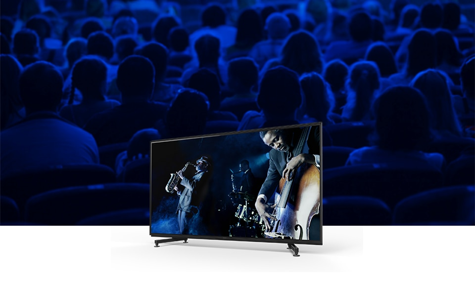 Система Acoustic Multi-Audio Sony ZG9 Series