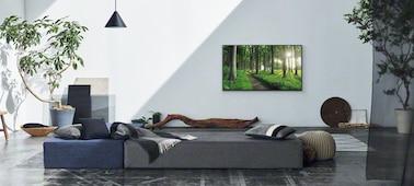 Изображение гостиной с уютным домашним интерьером