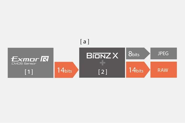 Вывод 14-битного формата RAW для естественных градаций